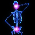 Neck and hip joint © 7activestudio