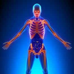 chiropractors can help with fibromyalgia
