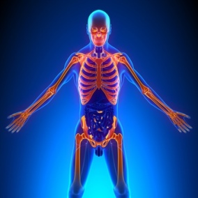 chiropractors can help with fibromyalgia and inflamation