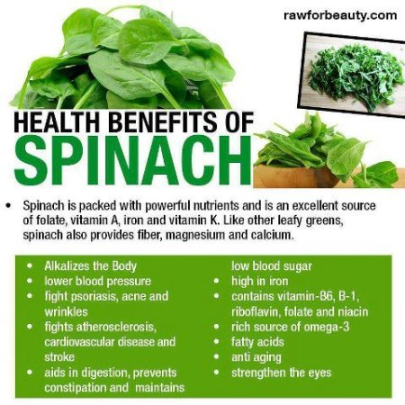 Health Benefits of Spinach Kingston chiropractic Wilkes Barre chiropractic
